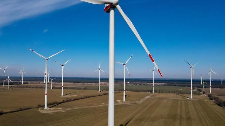 Ein Windpark in Brandenburg. Foto: Patrick Pleul/dpa-Zentralbild/dpa