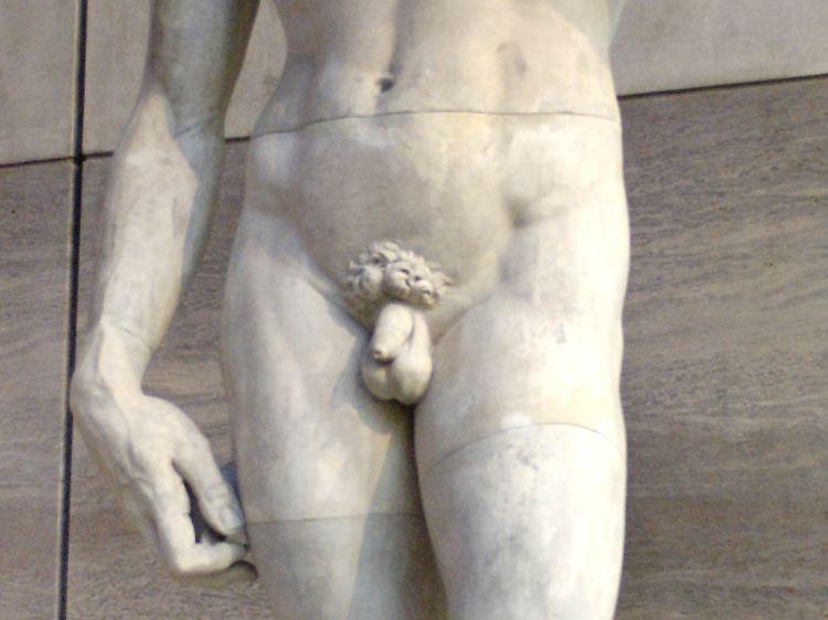 Bilder vom Penis
