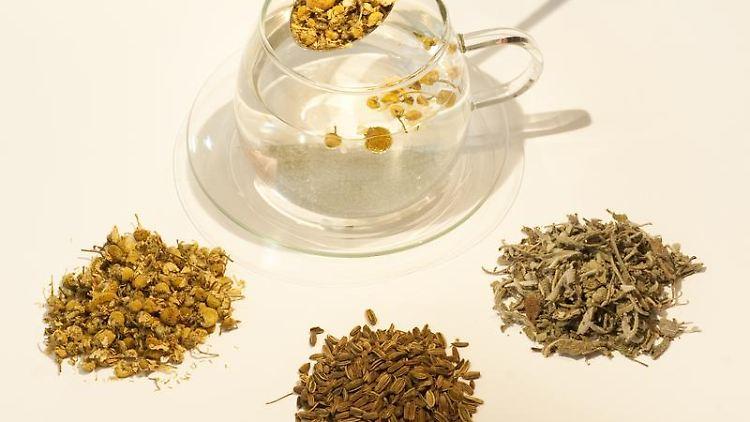 Ob Kamille, Fenchel oder Salbei: Viele Heilkräuter eignen sich als Tee für die Selbstbehandlung. (Bild: Andrea Warnecke/dpa/tmn)