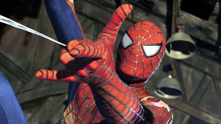 spider3.jpg