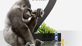 Gorilla Glas 2.jpg