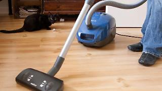 Mann beim Staubsaugen - Der perfekte Staubsauger sollte leise, wendig und mit einem langen Kabel ausgestattet sein. Foto: Kai Remmers