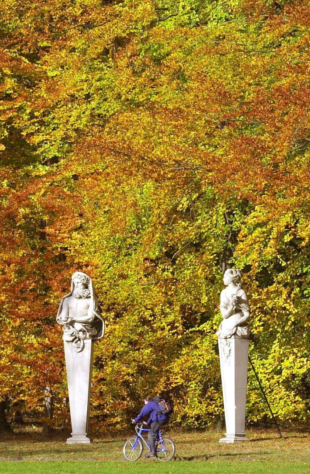 radfahrer_Schlosspark Sanssouci.jpg