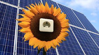 solarmodule_solarstrom.jpg